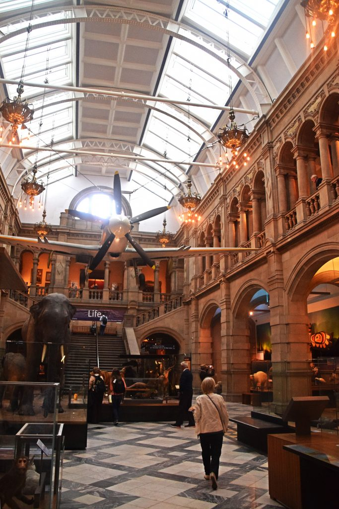 Plenty of stuffed animals to go round in the Kelvingrove Museum, Glasgow, Scotland